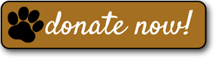 GRREAT-Donate-Now-Button